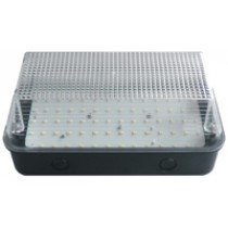 Bulkhead 8W LED Black Base Clear Diffuser - 6000K