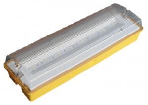 LED Emergency Maint. Fitting - 110V